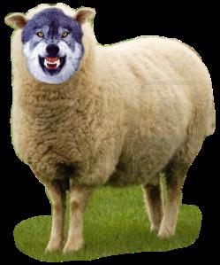 Sheet-Wolf